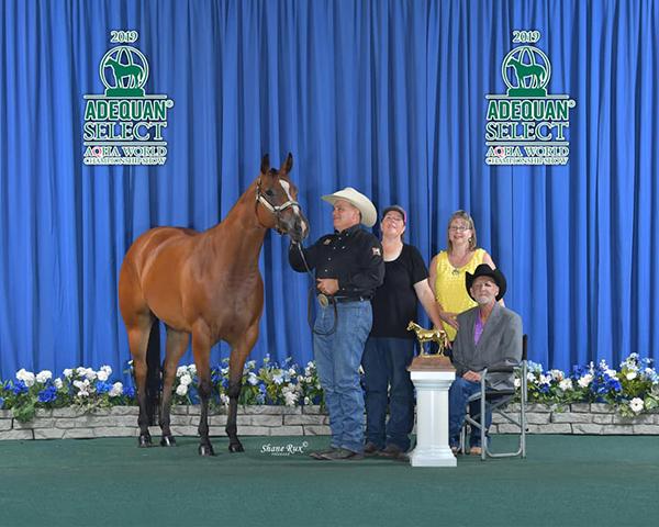 Horseman, Mark Purdy, Has Passed
