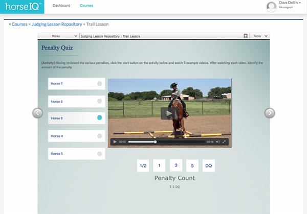 Learn How Classes are Judged With APHA's HorseIQ