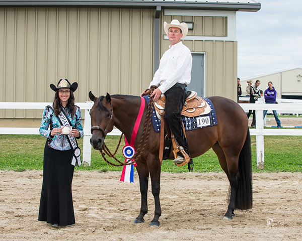 Around the Rings- Ontario QH Summer Finale and Breeders Futurity
