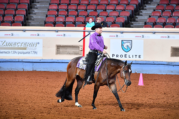 Level 2 Ineligibility List For 2019 AQHA World Show