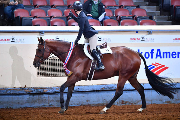 Enter AQHA World Show by Sept. 16th