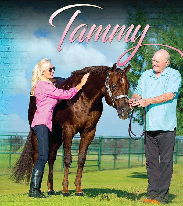Tammy Bradshaw – Paving Her Own Way