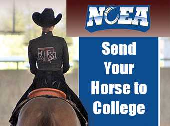 NCEA – Send Your Horse To College