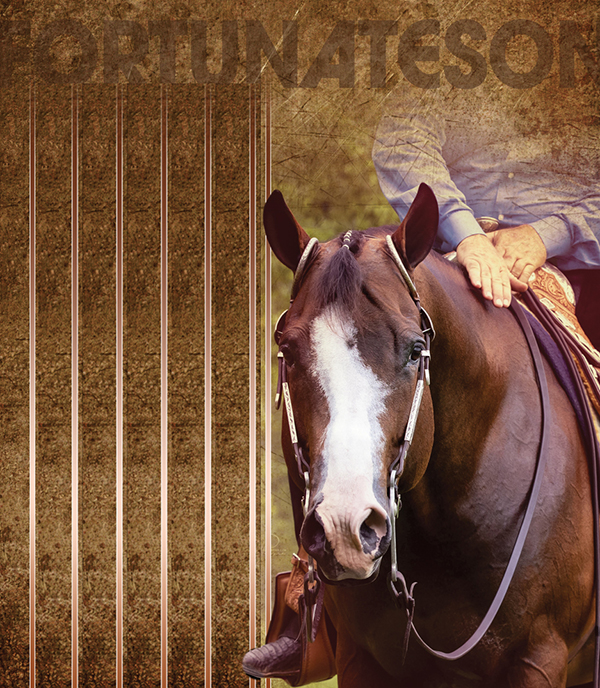 Sea Ridge Farms Proudly Introduces AQHA Stallion – Fortunateson