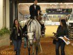 2019 AQHA World- Amateur Hunter Under Saddle