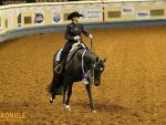 2019 AQHA World- Amateur Horsemanship