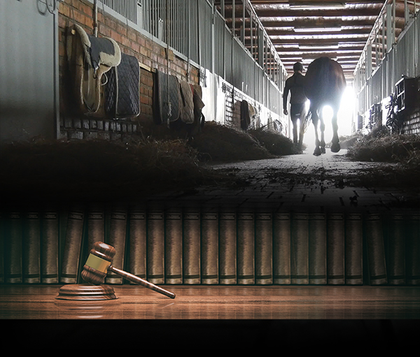 """The Stable Has a """"No Roving Equine Professional"""" Policy – Now What?"""