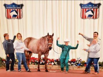 Pray and Persevere- How Showing Horses is Helping Kathy Stoll Beat Pancreatic Cancer