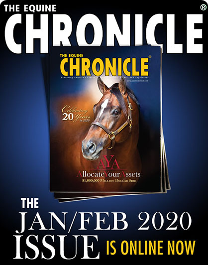 Jan/Feb 2020 Edition of The Equine Chronicle Now Online!