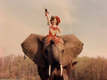 Exotic Roots- From Elephants to Horses