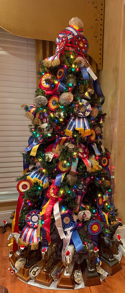 """EC Photo of the Day- """"Award"""" For the Best Decorated Christmas Tree"""