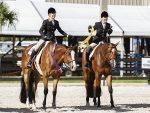 Fox Lea Farm/NSBA FITS Conclude Florida Winter Circuits