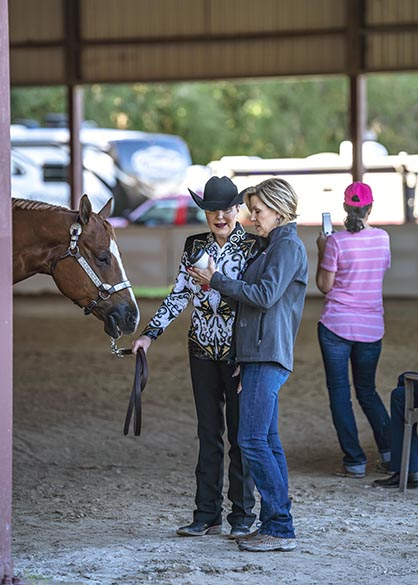 Results- Fox Lea Farm Circuit and NSBA FITS- 1/9