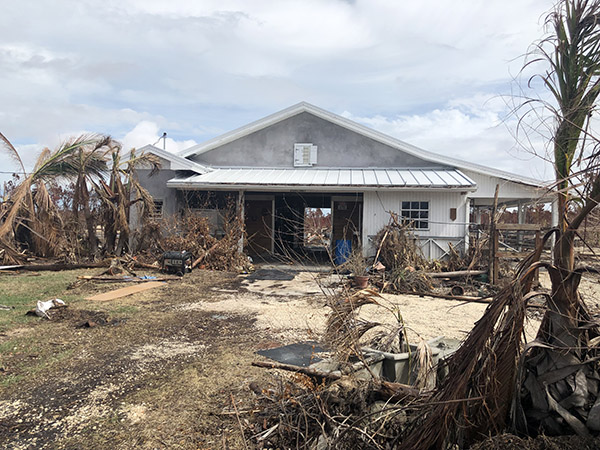 Florida Nonprofit Helps Bahamas Farm Struck by Hurricane Dorian Rebound