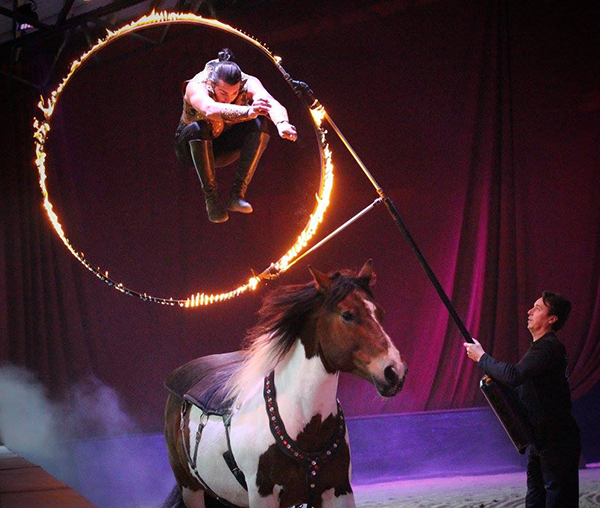 Fantasia, Night of the Dancing Horses, Coming to Ohio in April