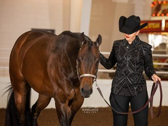 Around the Ring Photos and Results- APHA Zone 9 Southern Classic