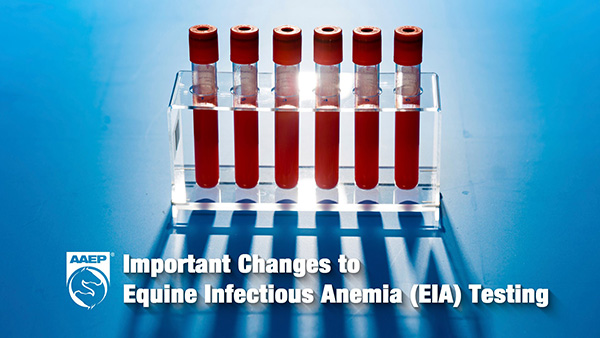 New Requirements For Equine Infectious Anemia Testing