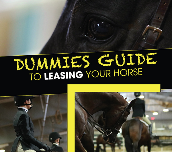 Dummies Guide to Leasing Your Horse