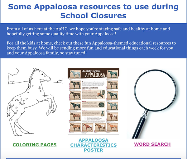Appaloosa Activities For Kids During School Closures