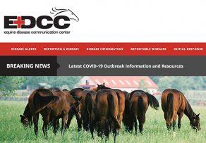 Equine Disease Communication Center LaunchesEquine Coronavirus and COVID-19 Resources