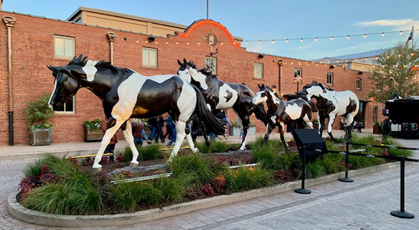 """Do Right By The Horse""- 2020 APHA National Convention Recap"