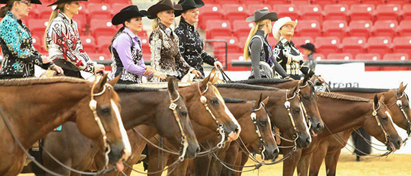 AQHA Cancels Level 1 Championships- East, West, and Central