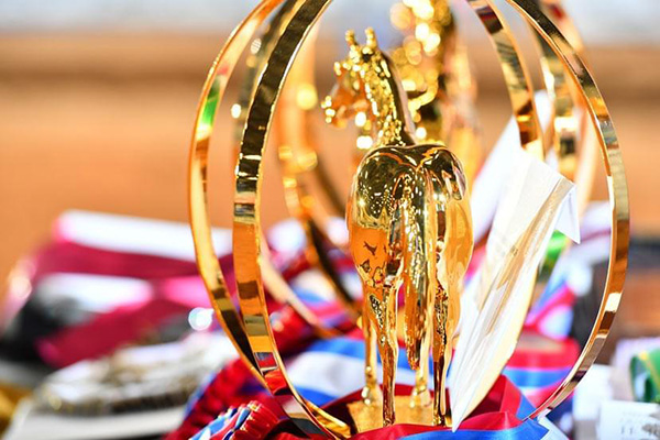 AQHA Waives 2020 World Show Qualification