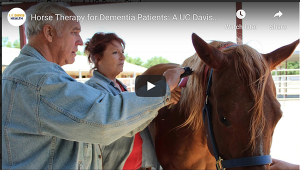 Equine Therapy Helps Dementia Patients