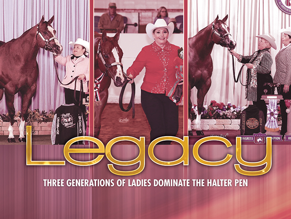 Legacy – Three Generations of Ladies Dominate the Halter Pen