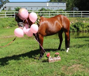 EC Photo of the Day- Gender Reveal Gone Wrong