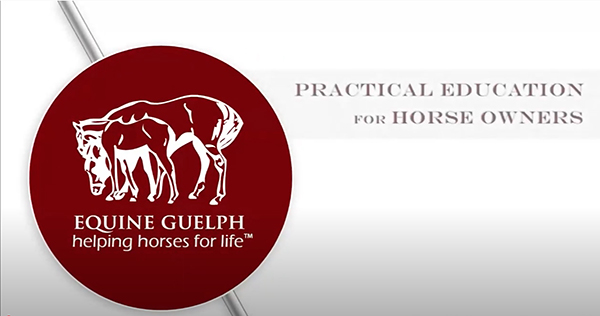 Lameness Research and Prevention Tips with Dr. Judith Koenig at OVC
