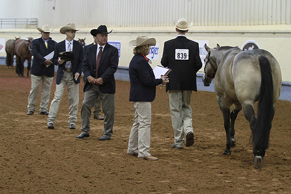 Judges For 2020 AQHA Youth World; Level 1 Classes Added