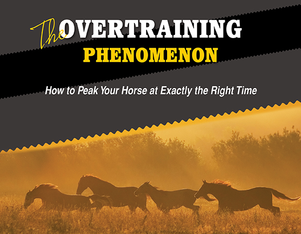 The Overtraining Phenomenon – How to Peak Your Horse at Exactly the Right Time