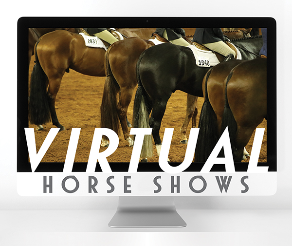 Virtual Horse Shows Offer New Opportunities Amid Uncharted Territory