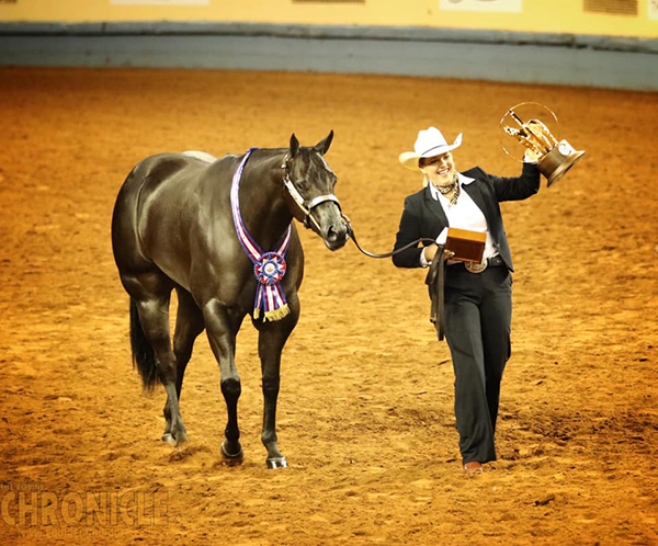 AQHA Halter Youth World Champions Include Niebrugge, Castle, Searles, West, and More