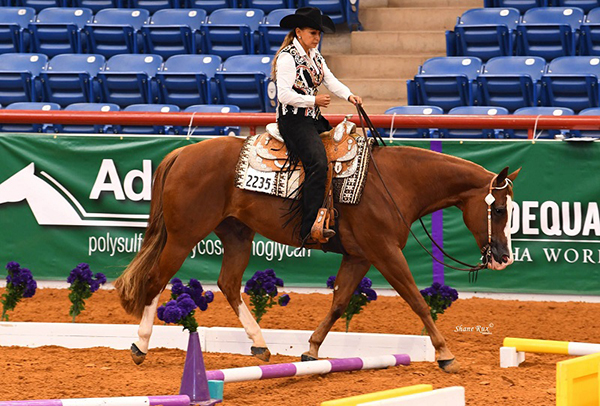 Entry Info For AQHA Select World Show