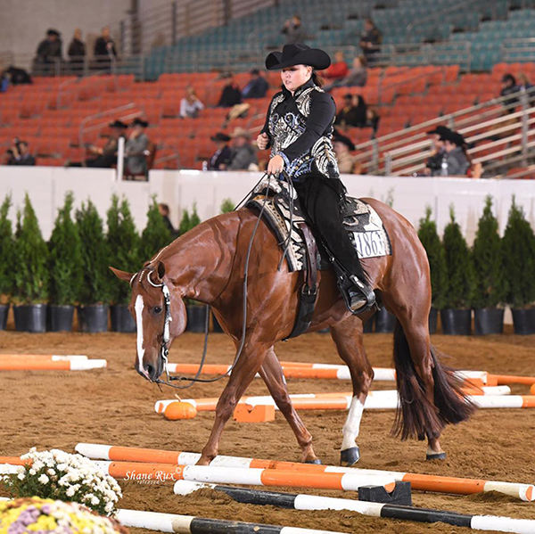 Bid Now – AQHA Pro Horsemen Guy Stoops Scholarship Auction- Lessons With 63 Trainers