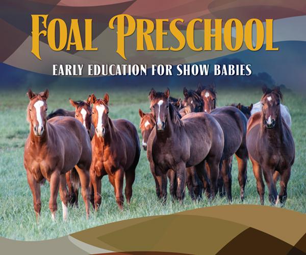 Foal Preschool • Early Education For Show Babies
