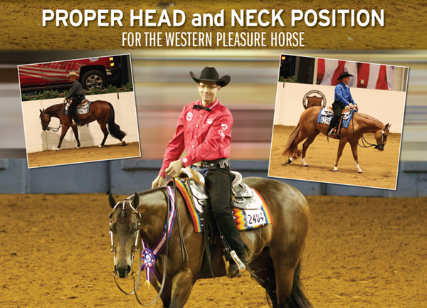 Proper Head and Neck Position for the Western Pleasure Horse
