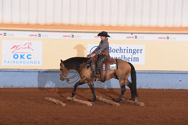 AQHA World Show Adds New Stakes Classes