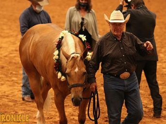 APHA World Champions Include Stehney, Johnson, Maxwell, Snow, Ellsworth