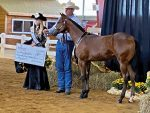 Around the Rings – East Coast Futurity With G-Man