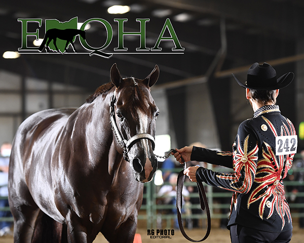 Photos and Results From EOQHA September Show