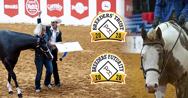 APHA Breeders' Trust and Futurity Classes Pay Big at APHA World Show