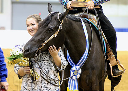 Congress From Home- 2016- A Certain Vino is Victorious in Final Senior Western Pleasure Performance