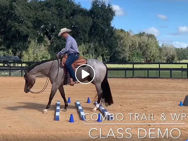 Tom Powers Christmas Challenge Western Pleasure/Trail Combo Class Demo