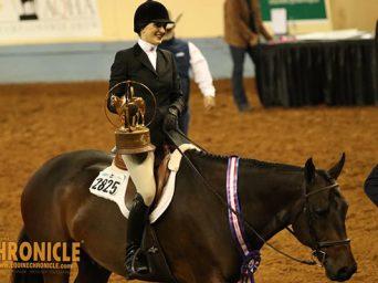 EC TV- 2020 AQHA World- Amateur Equitation AND L2 Horsemanship