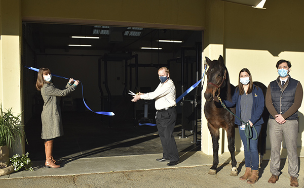 Equine Reproduction Service Updates Facilities at UC Davis Center for Equine Health