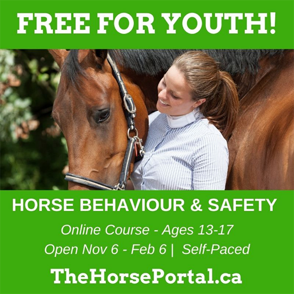 Free Equine Behavior and Safety Online Course Offered to Kids Around the World