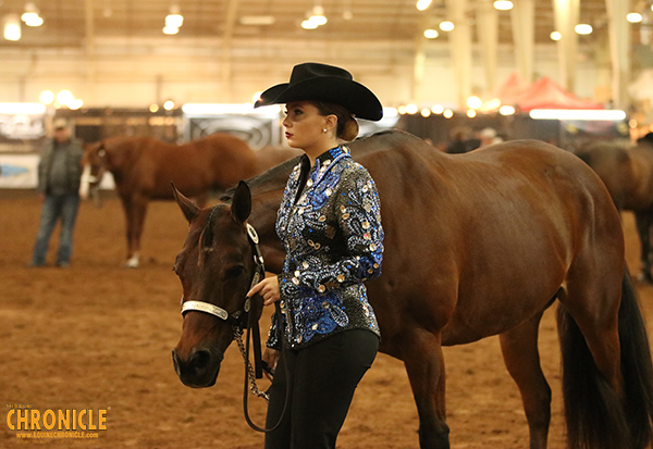 Effective Jan. 1, 2021, AQHA Approved Show Admin Fee is $8